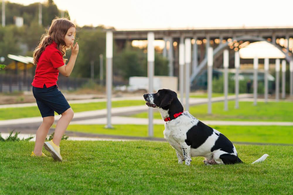 Pediater: 'Otroci, ki odraščajo v pasji družbi so bolj zdravi'