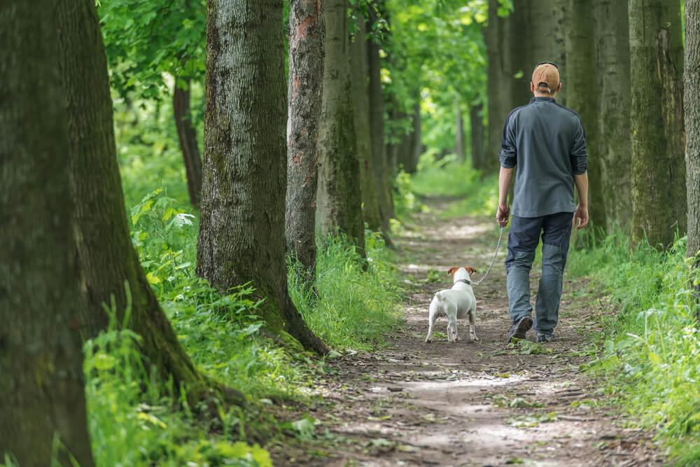 'Potem, ko sem zbolel, me je psička Ellie naučila živeti za trenutek'
