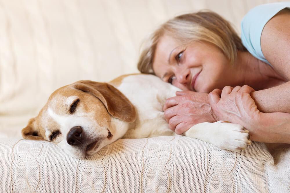 Vsak pasji skrbnik mora imeti 'rezervni načrt' za primer bolezni ali smrti