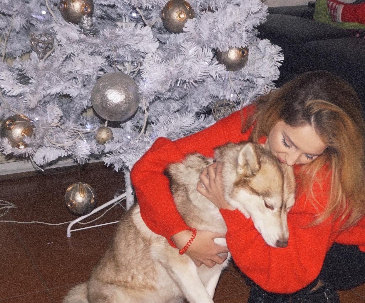 Psička Masha po dveh osamljenih letih sorodno dušo našla v Niki