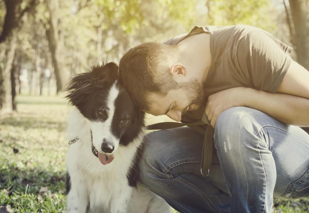 Izgubljeni pes in lastnik po 200 dneh narazen zopet združena