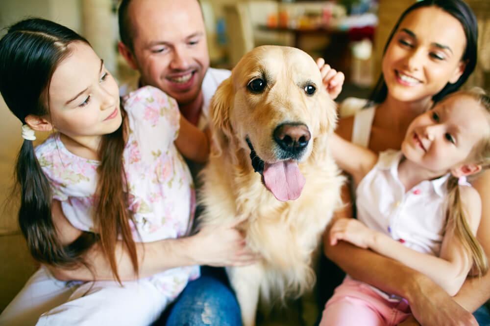 10 pasem psov, ki so primerne za družine z majhnimi otroki