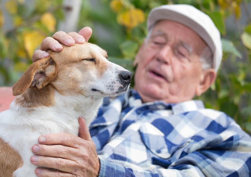 Ženska prepotovala 1000 kilometrov, da bi združila 93-letnika z njegovim ljubim psom