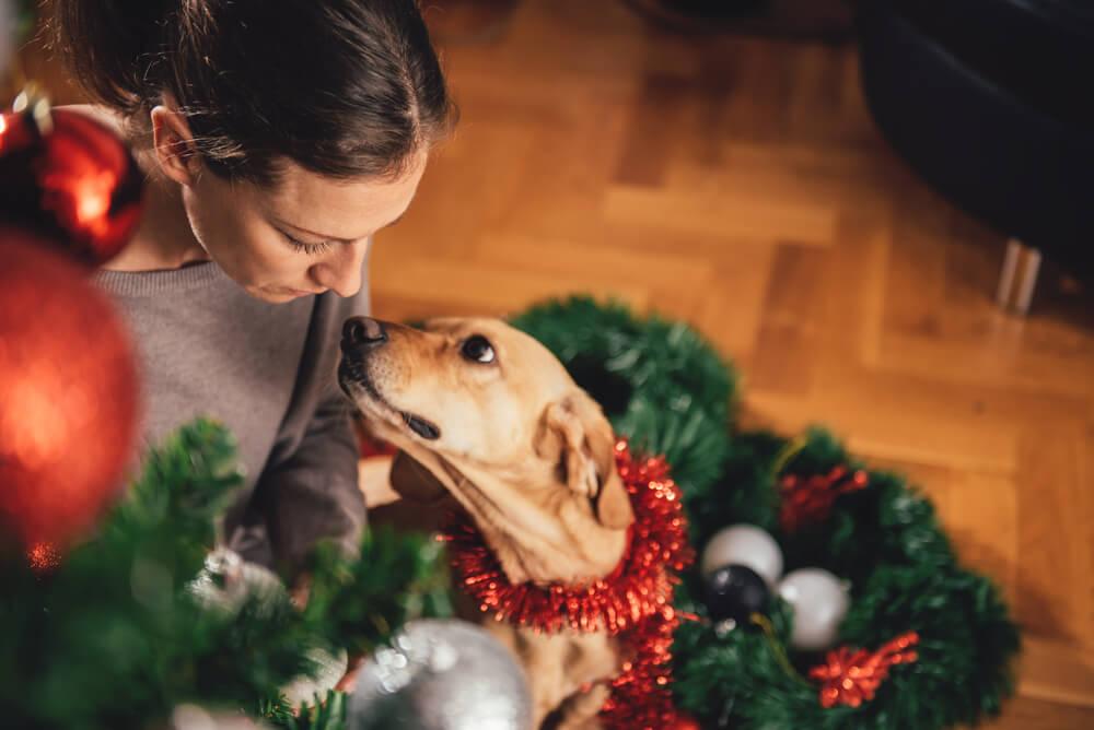 Pes zavohal infekcijo in rešil svojo 22-letno skrbnico