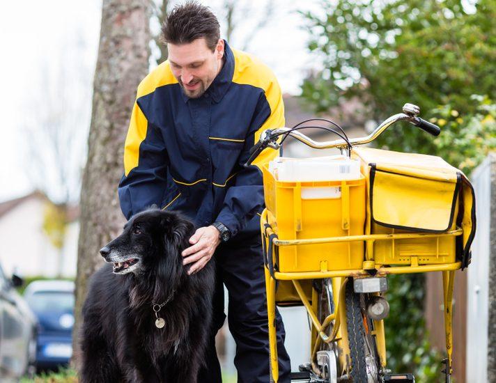 Video: Poglejte, kakšen pristop do psa ima ta poštar
