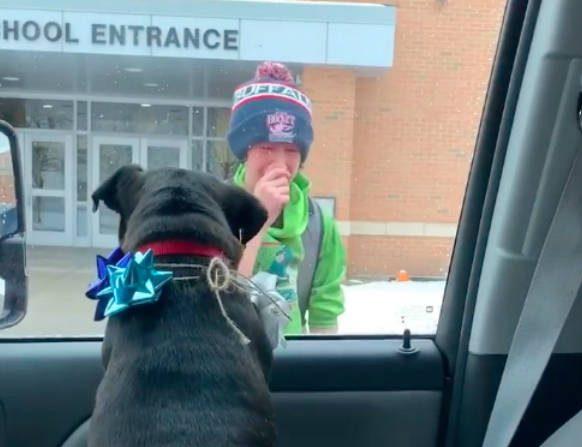 Video: Božični čudež - deček v solzah spet združen s svojim ljubljenim psom