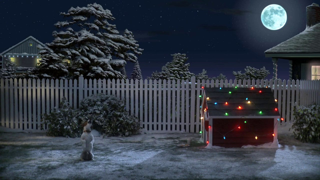 Božični video: Kako nestrpno kuža čaka Božička