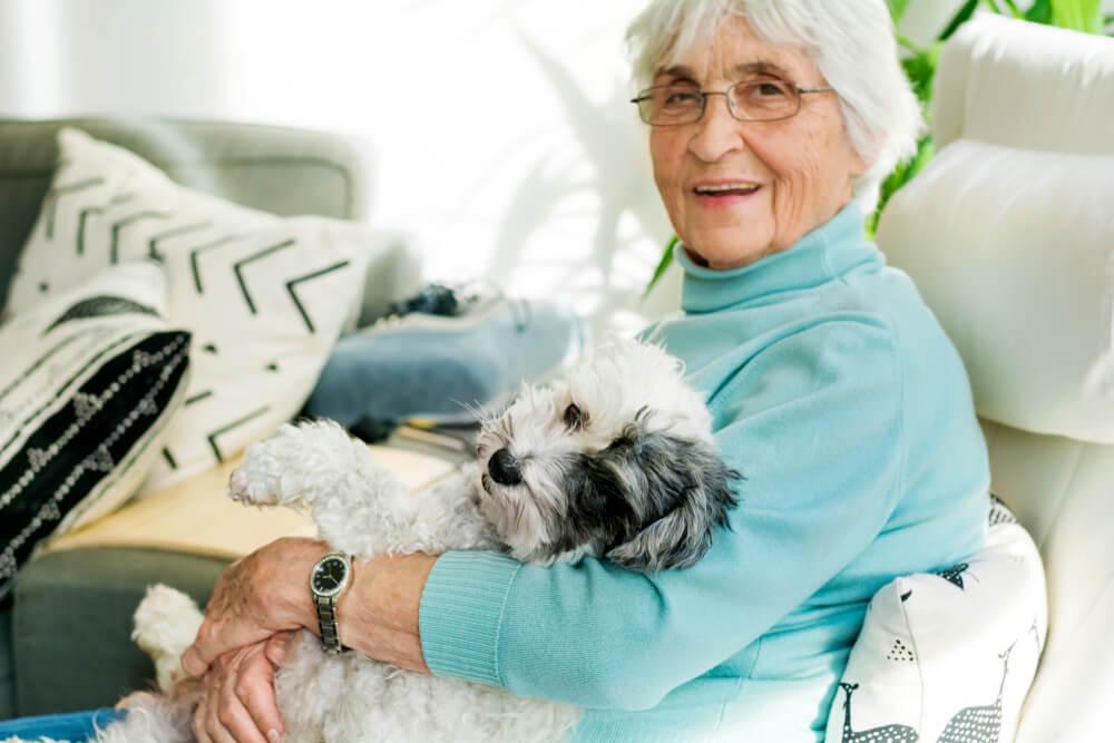 21 pasem psov, ki so primerne za starejše ljudi