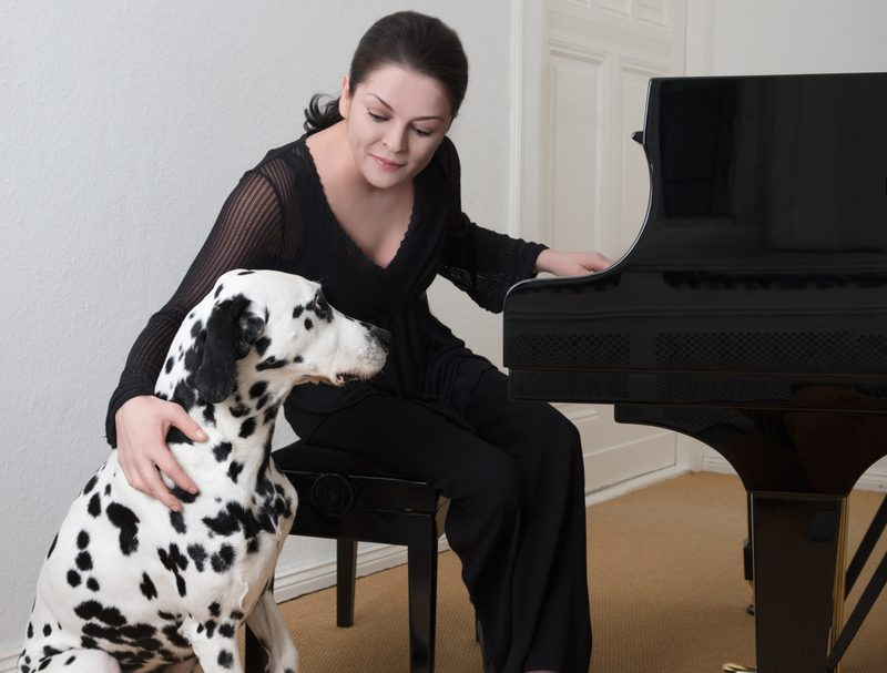 Video: Dalmatinca lastniki ujeli, ko je igral piano in zraven pel