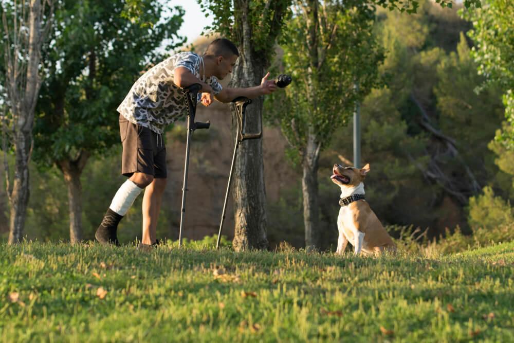 Moški zapravil 300 evrov za veterinarja, ki je ugotovil, da pes iz sočutja imitira njegovo poškodbo