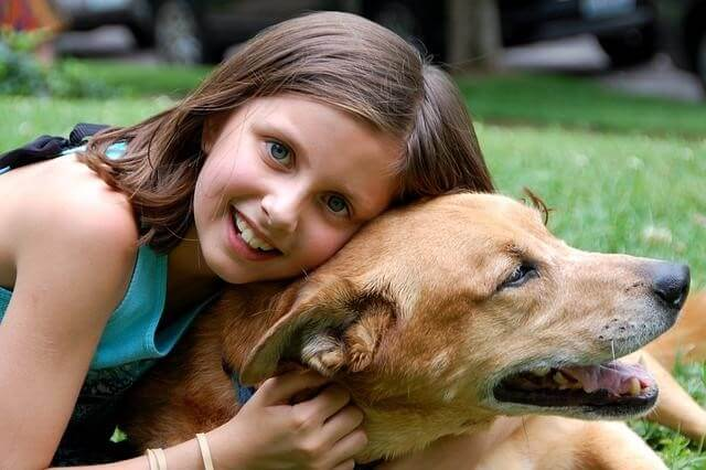 Vodič po hrani: Ali hranite vašega psa s pravo hrano?