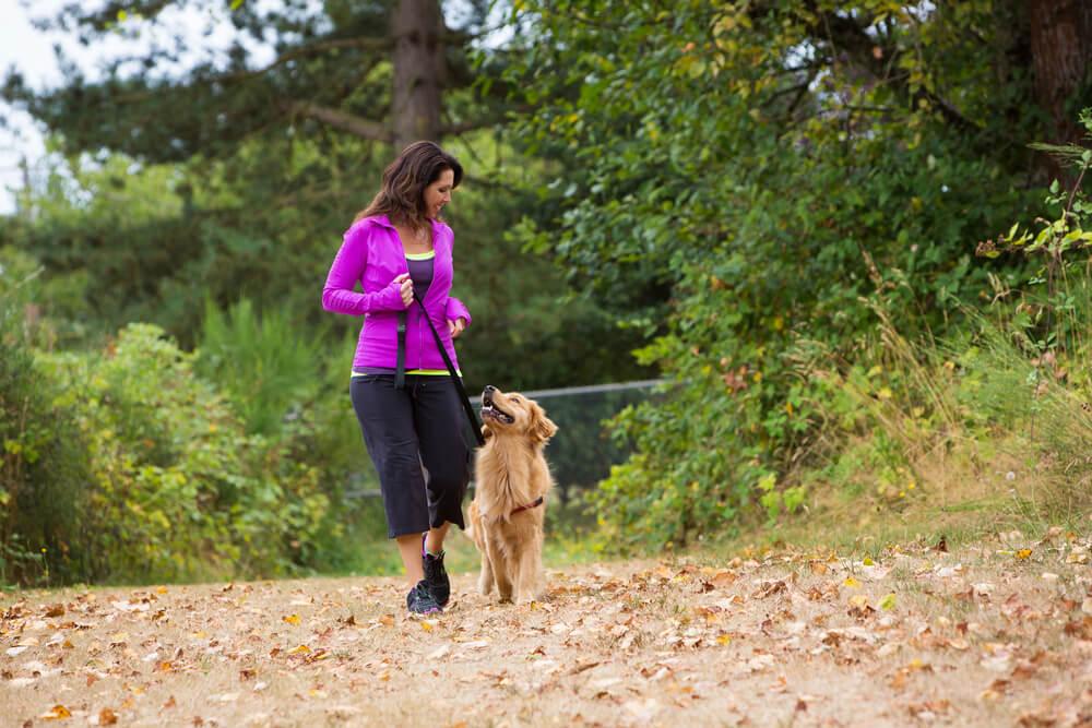 Kako popestriti pasje sprehode?