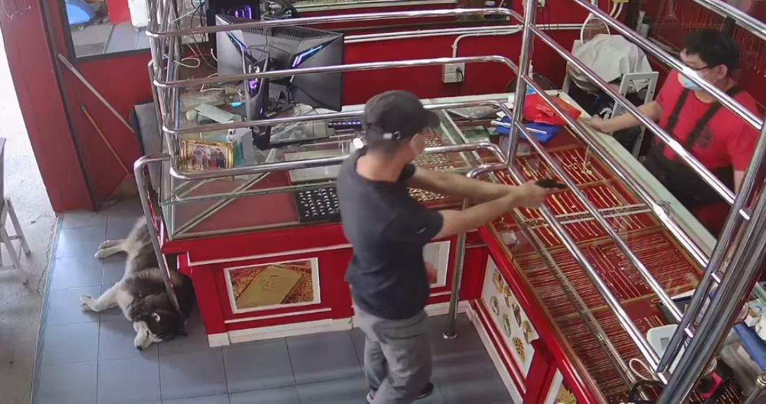 Video: v trgovini imeli vajo oboroženega ropa, pes čuvaj pa jo je predremal