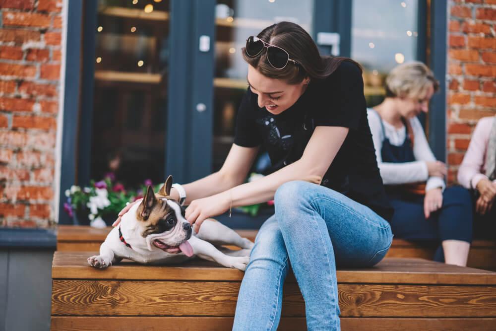 6 psom najbolj prijaznih držav