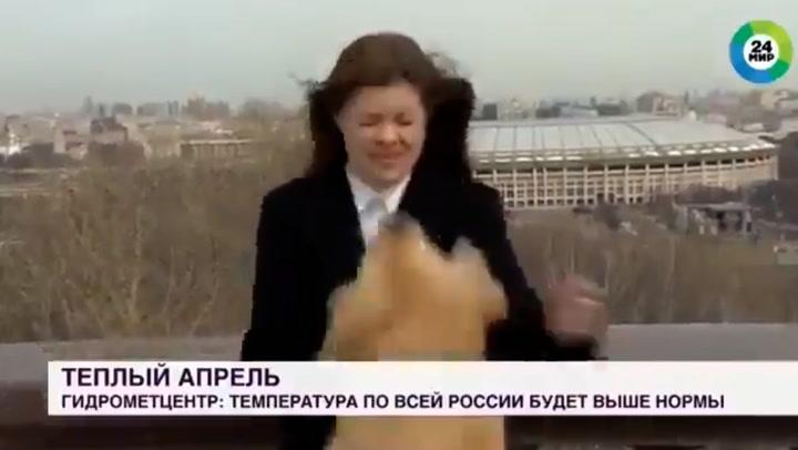 Video: pes novinarki med javljanjem v živo ukradel mikrofon