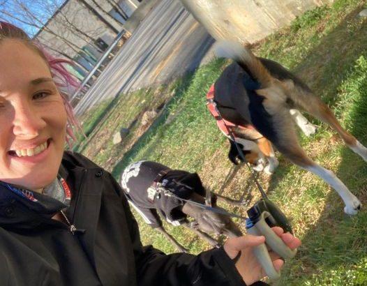 Jenny ta vikend pretekla 205 km in zbrala 4000 evrov za zapuščene živali