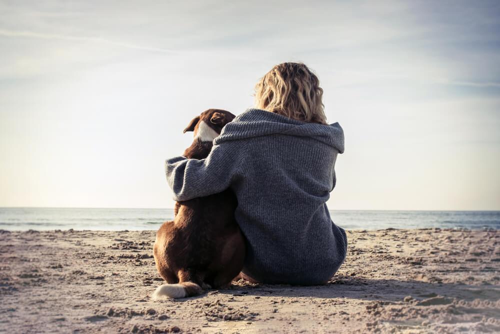 15 izjemnih citatov o psih